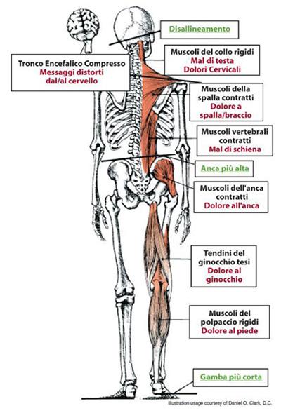 Trattamento del mal di schiena del ginocchio